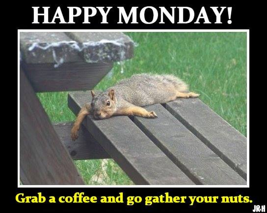 monday meme latest collection to start you week with fresh ...