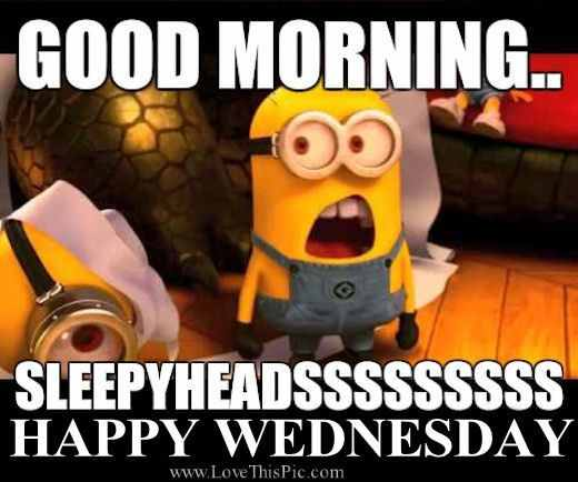 good morning minion memes