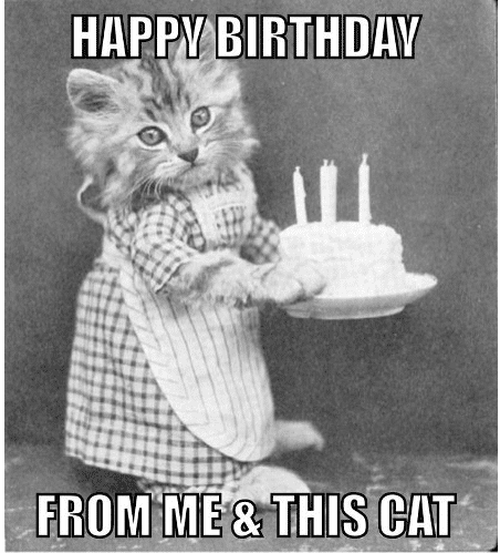 happy birthday from me