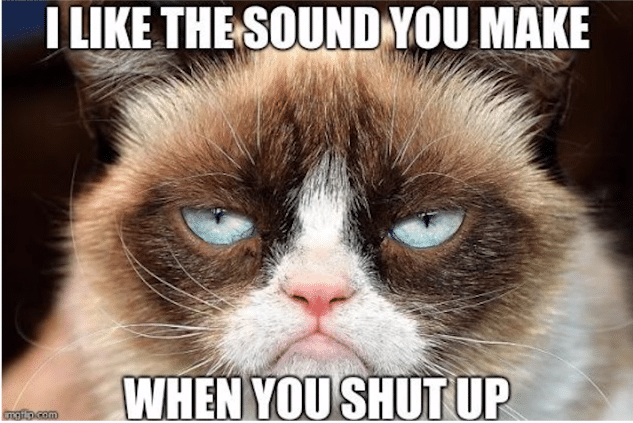grumpy sound cat meme