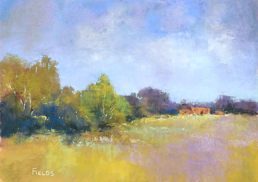 Fields_B_Highway303