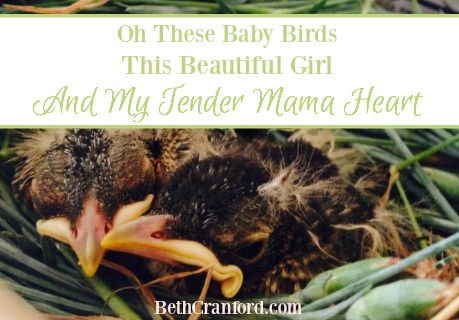 Oh, These Baby Birds, This Beautiful Girl, And My Tender Mama-Heart