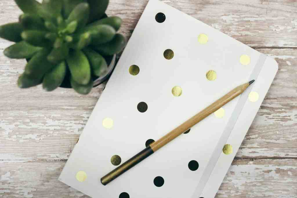 a gold polka dotted notebook and a succulent