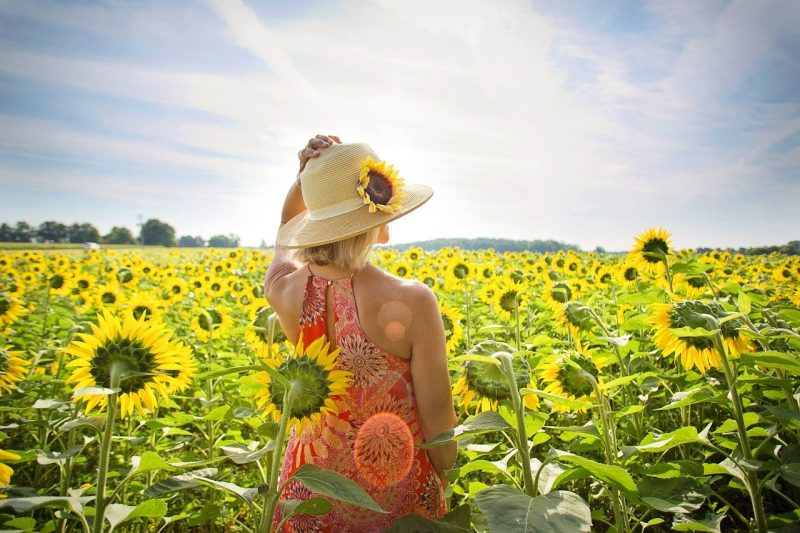 woman with her back to the camera standing in a field of sunflowers