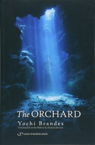 The ORchard book cover