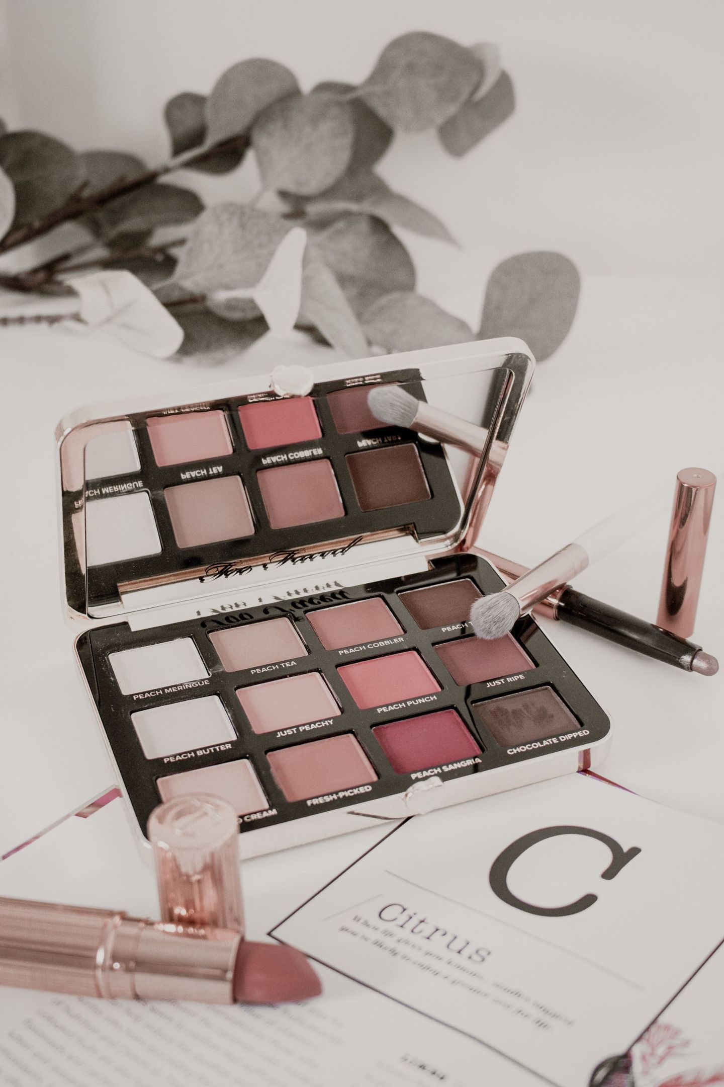 toofaced just peachy mattes palette