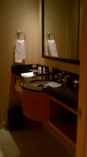 Loved the black counter & glass shower at the hotel