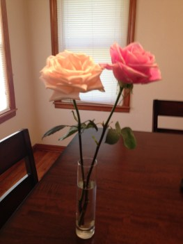 beautiful roses Deborah & Simmie blessed me with for my birthday Saturday