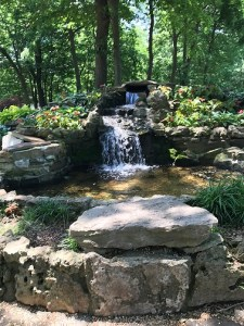 Botanical Garden Waterfall