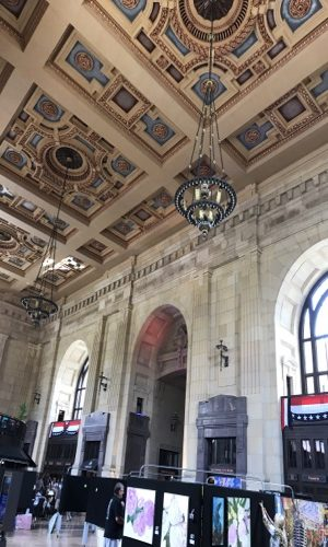 Union Station chandelier