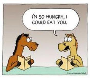 horse meme