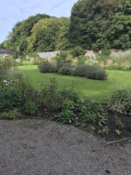 garden in the village