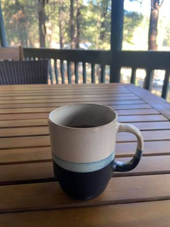 I enjoyed having coffee on the deck in the mornings and watching the birds.