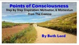 Points of Consciousness Cover