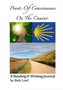 Points of Consciousness from The Camino