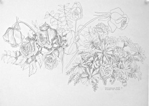 graphite drawing: Flower Presents for Gwen