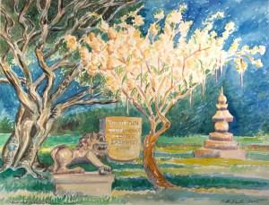 watercolor: Flowering Tree, University of Hawaii, Honolulu