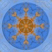 Looking Up Mandala 2 by Beth Sawickie www.bethsawickie.com/looking-up-mandala-2
