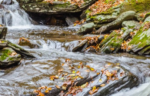 Moving Water at Ricketts Glen, PA by Beth Sawickie www.bethsawickie.com/our-ricketts-glen-adventure/