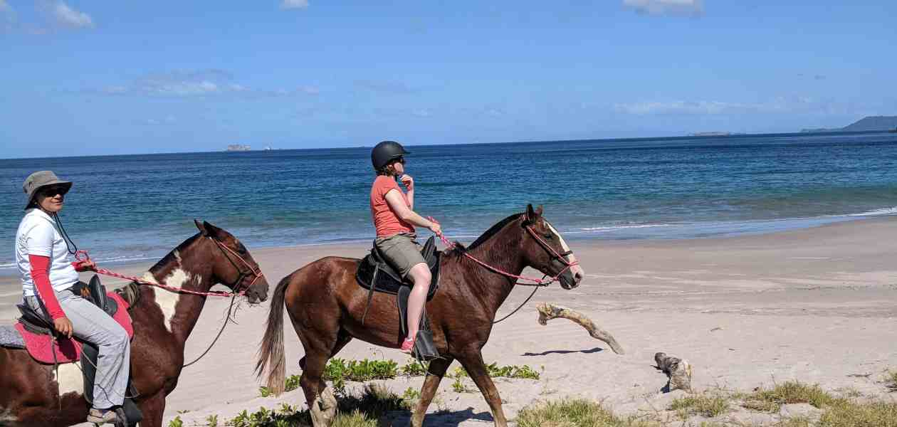 Horseriding along Pirate Bay