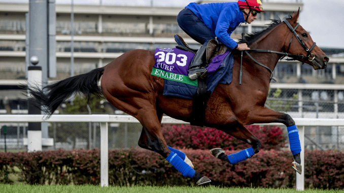 Breeders Cup Turf Favourite Enable