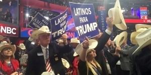 Trump Political Sign Fails