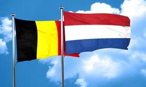 traducteurs néerlandais