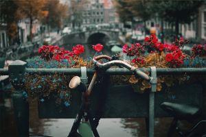 Amsterdam - die Fahrradstadt schlechthin