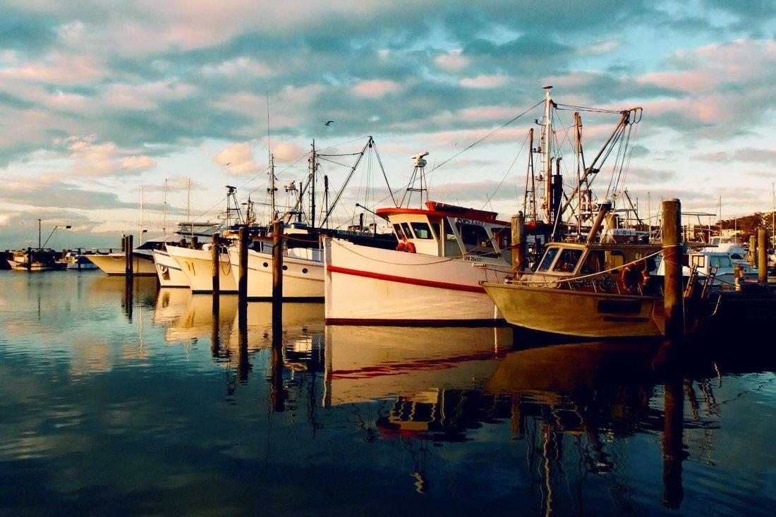 Fischkutter auf den Azoren