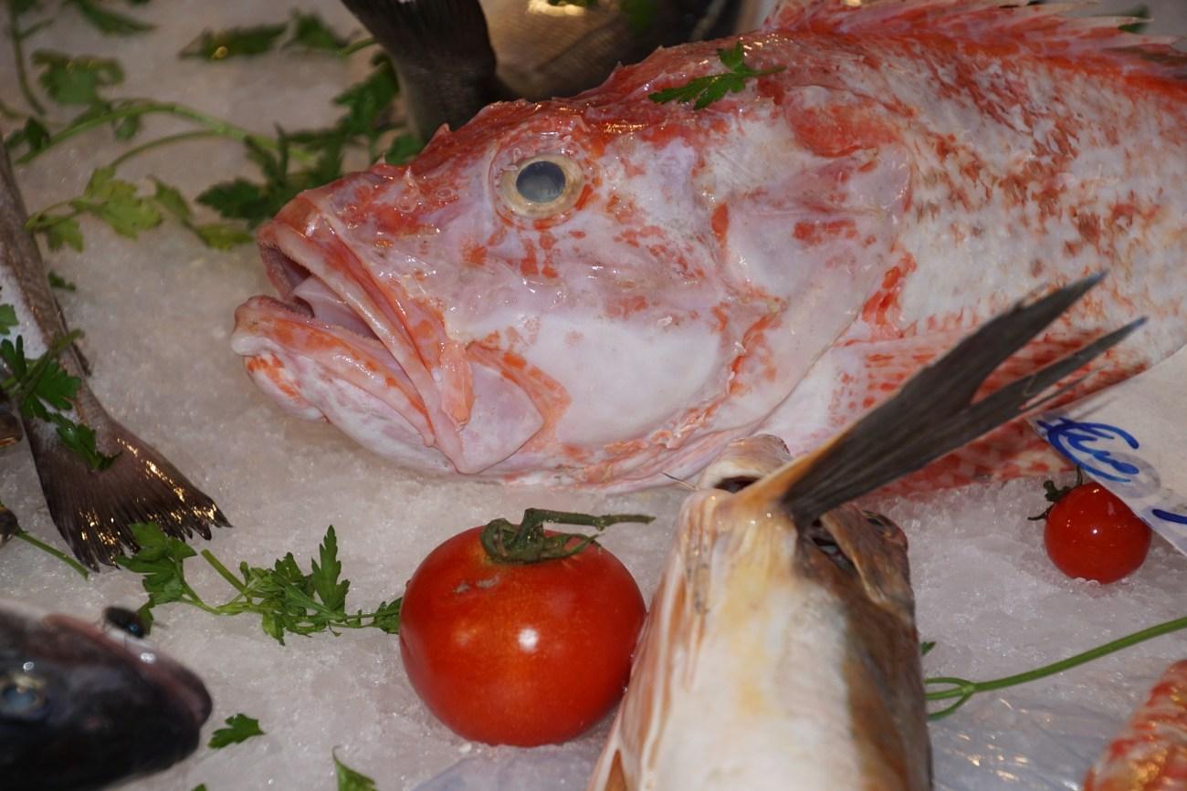 Fisch, Sizilien, Palermo