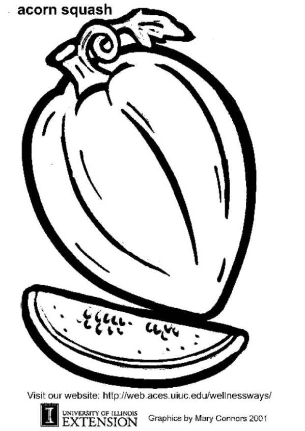 acorn coloring page # 42