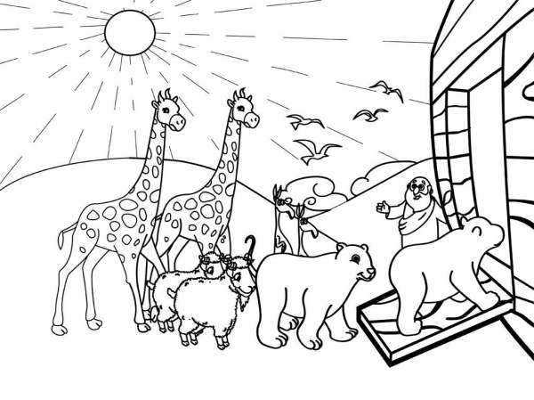 noah and the ark coloring pages # 55