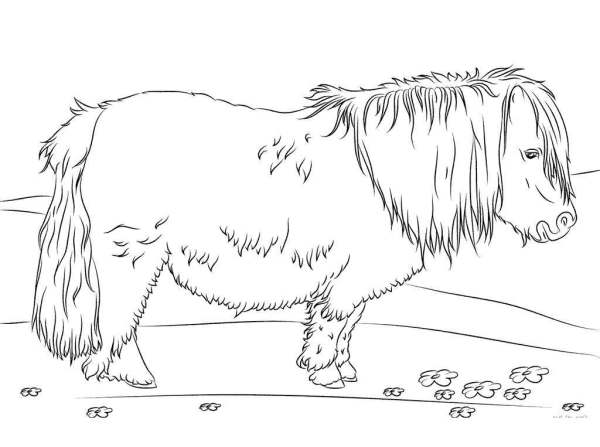 realistic horse coloring pages # 35