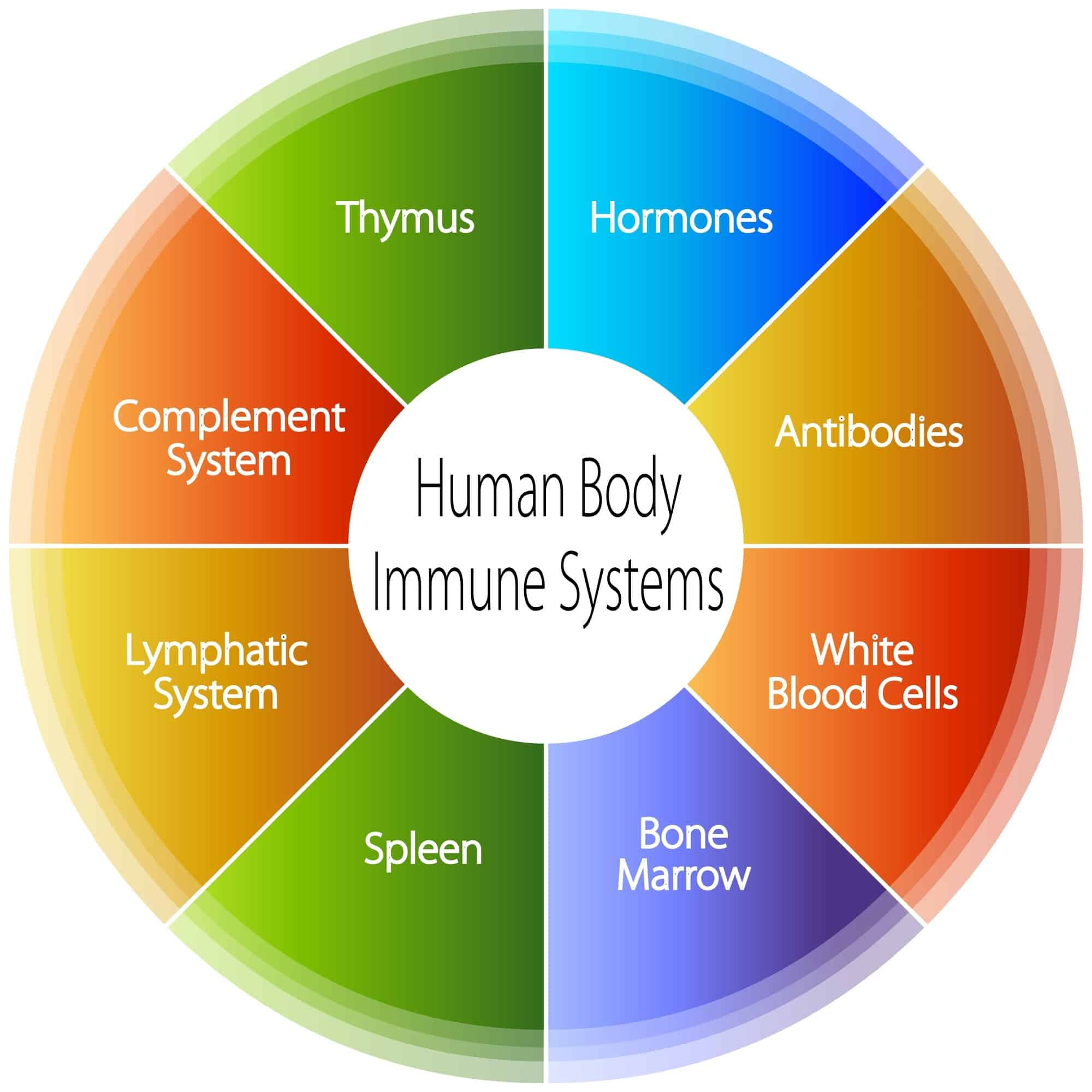 Image result for Low social status damages the immune system function