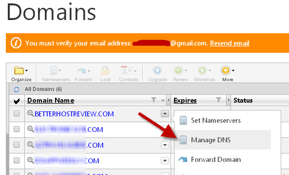 manage domain dns with godaddy