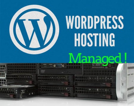managed wordpress hosting vps