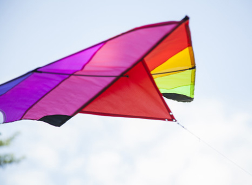 Fredericks And Mae Kites