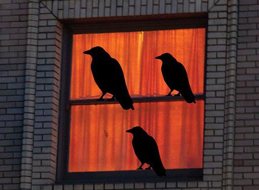 Three Black Bird Decals