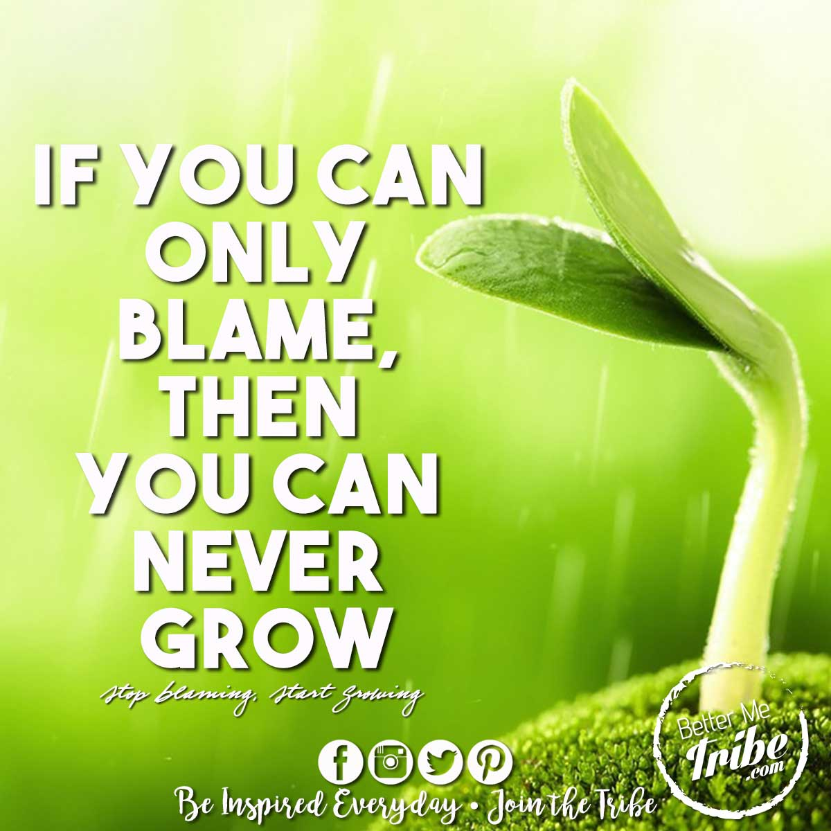 Blame-Grow-web