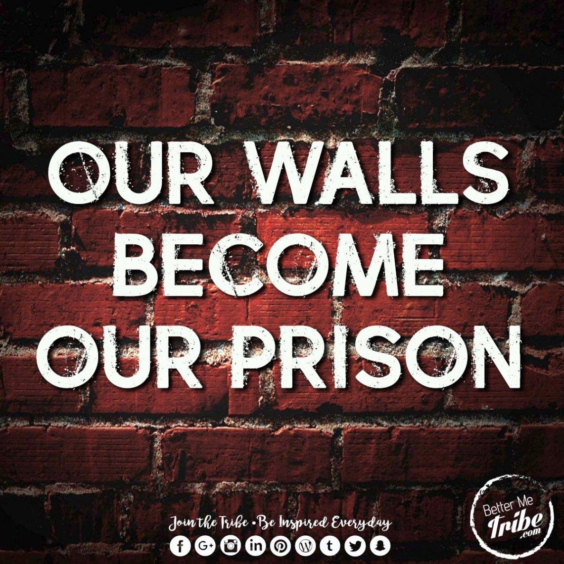 walls-web
