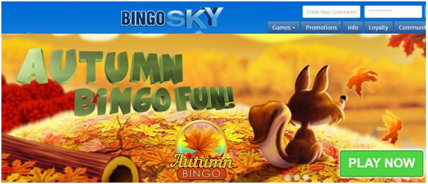 Bingo Sky App