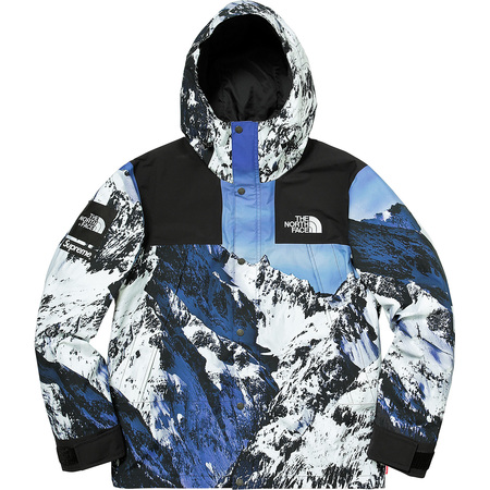 Supreme®/The North Face® Mountain Parka (Mountain)