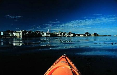 Kayak in Monterey Bay - Risky but Worth It