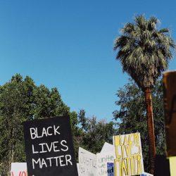 Black Lives Matter signs, blue sky, palms trees