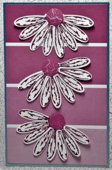 Card by Splitcoaststampers