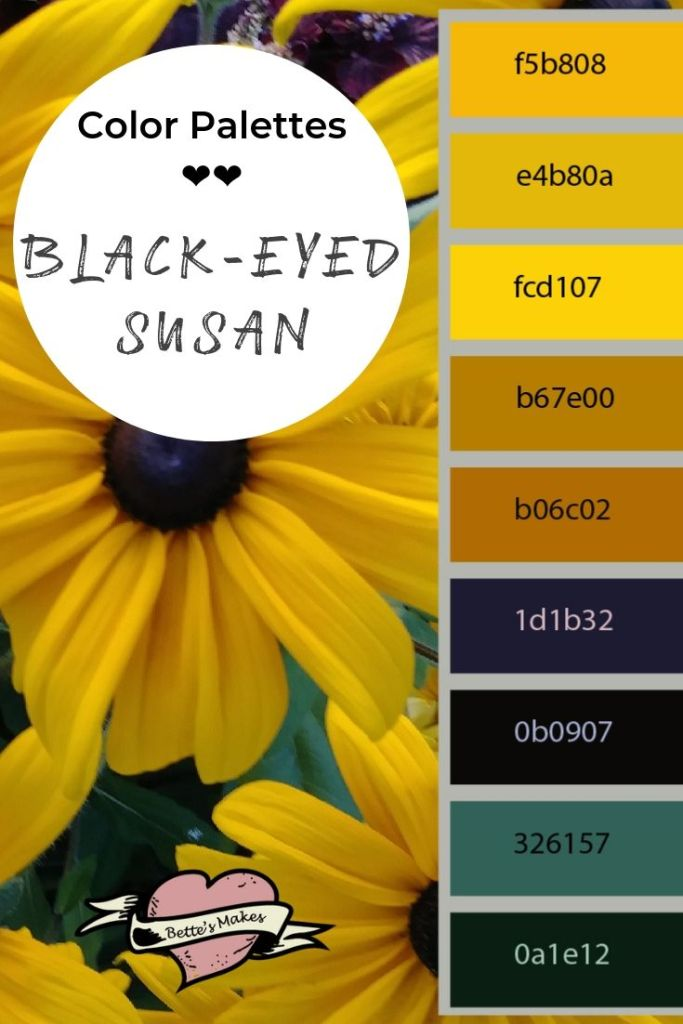 Color Palettes - Zinnia Black-eyed-Susan - BettesMakes.com