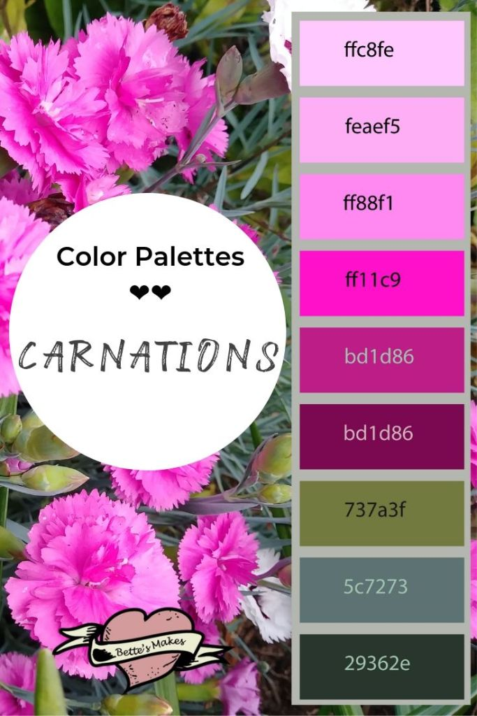 Color Palette - Carnations - Weekly Pin