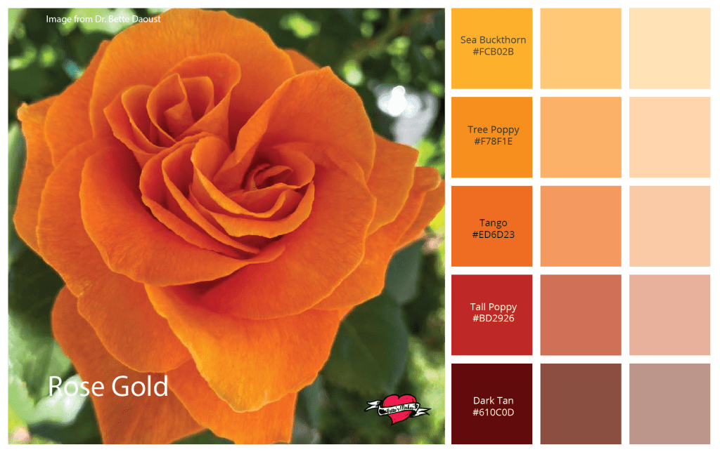Weekly Color Palette - Rose Gold - California