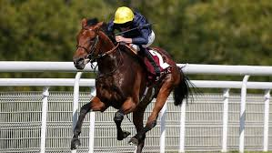 Crystal Ocean Tops Betting to Win 2017 St Leger
