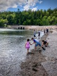Throwing rocks and collecting shells at Otter Cove